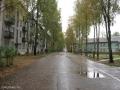центральная улица посёлка Солнечный