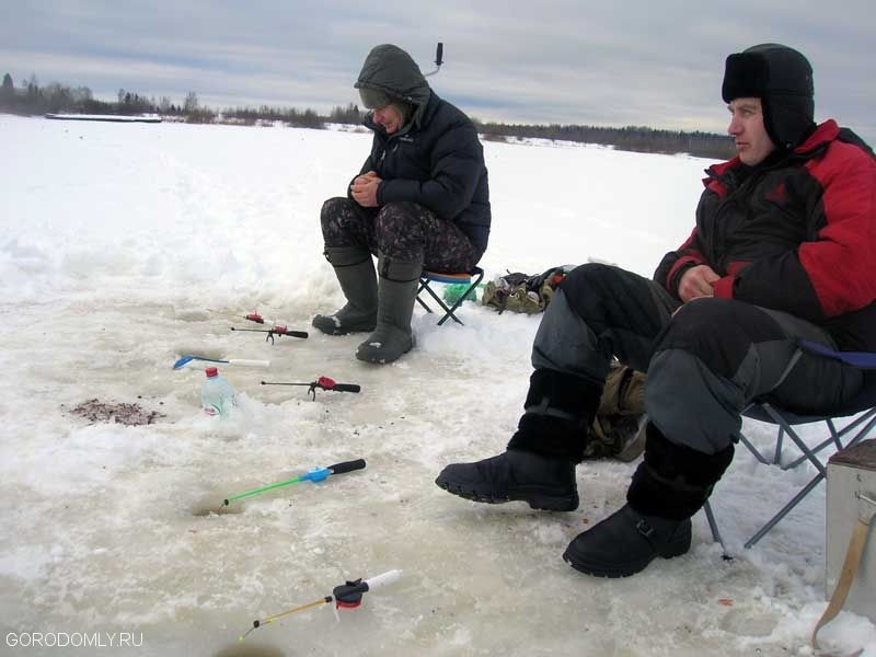 ловля леща в московской области