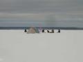 Рыбаки на Иваньковском водохранилище
