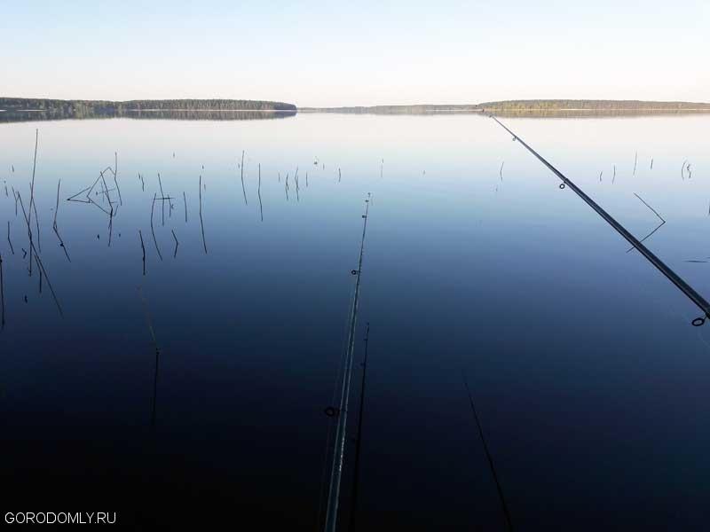 Утренняя рыбалка на Селигере