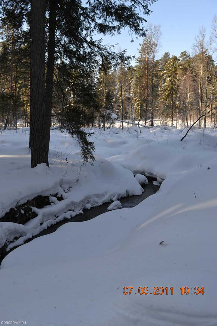 Майский ручей зимой на Городомле