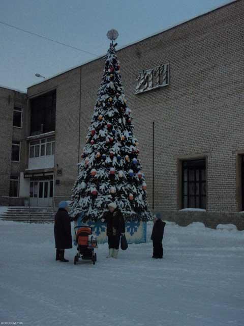 Новогодняя елка на Городомле
