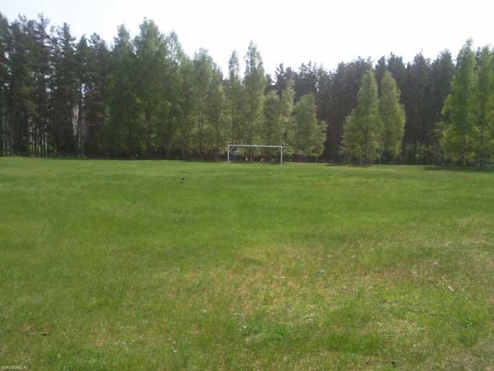 Городомля. Футбольное поле на стадионе.