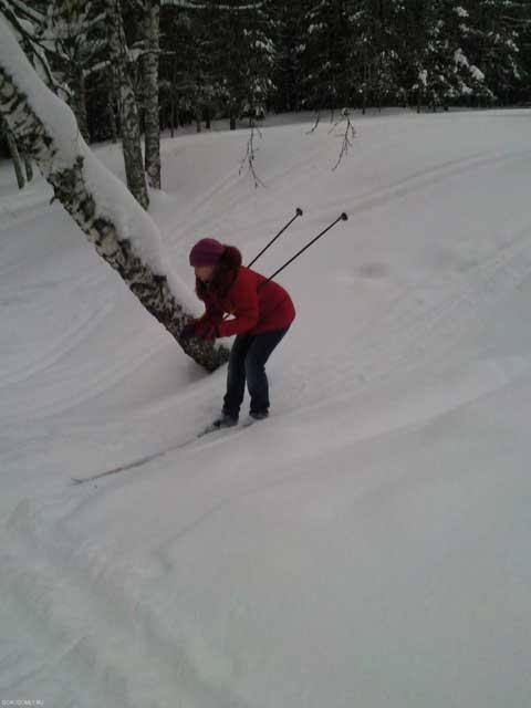 Лыжные прогулки по Городомле.