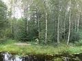 Так начинается Волга