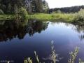 Великолепное место на реке Логовежь