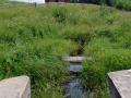 Первые сто метров реки Волги