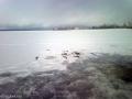 Закрытие сезона зимней рыбалки на Селигере в 2017 году