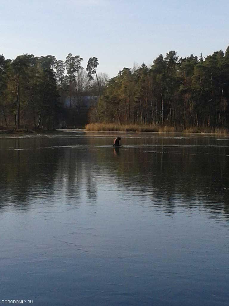 Старт сезона зимней рыбылки.Первый лёд на внутреннем озере Городомли.