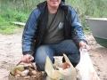 Часовая прогулка по лесу Хачина