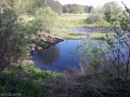 Река Логовежь, затон